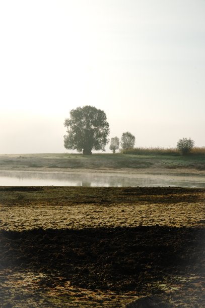 Mysterious foggy landscape at the Orient Lake