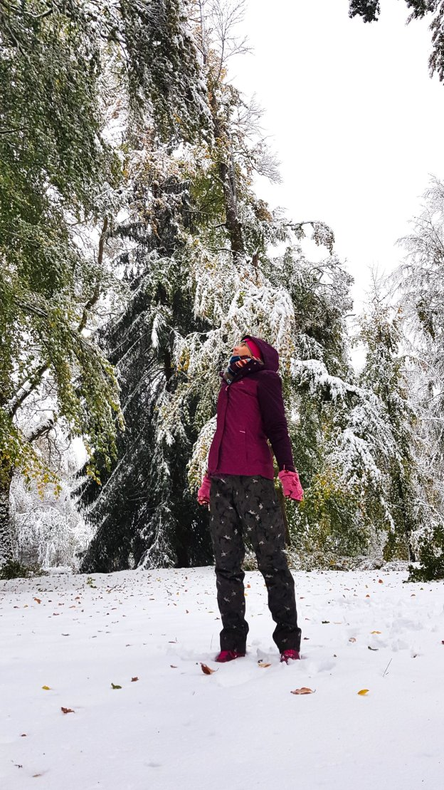 A snowy walk, watching out for crashing trees!
