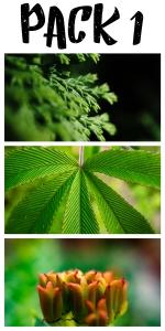 Wild Nature Wallpaper pack 1