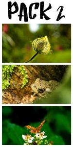 Wild Nature Wallpaper pack 2